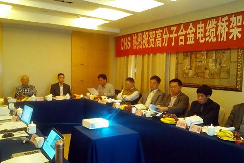 长虹塑料集团英派瑞塑料股份有限公司高分子合金电缆桥架专家论证会在南京召开