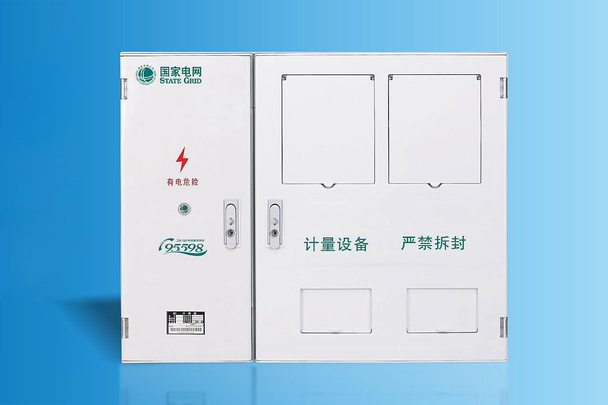 CHS-PXS201新国网三相二表位电能计量箱 23-1